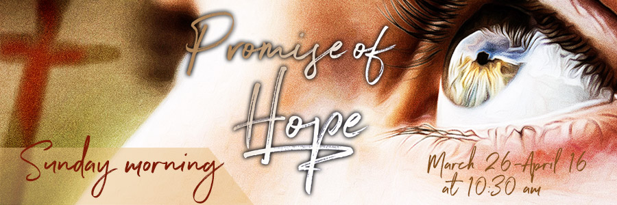 Promise of Hope Services